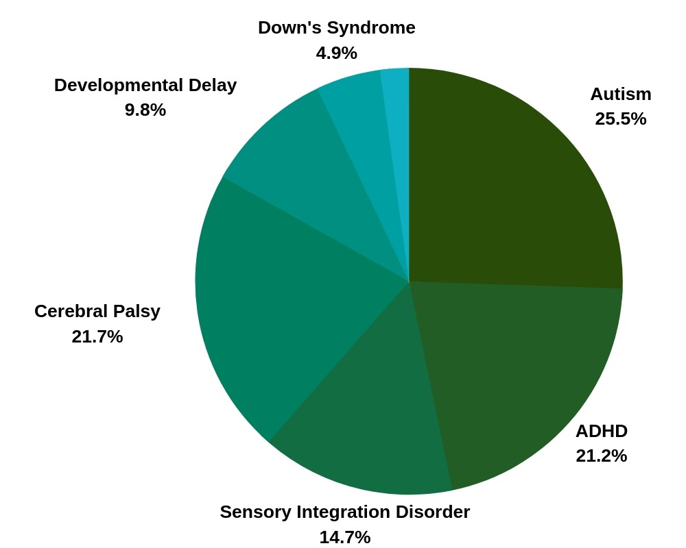 percentage of clients with a diagnosis