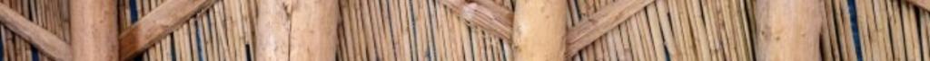 hemp fibres