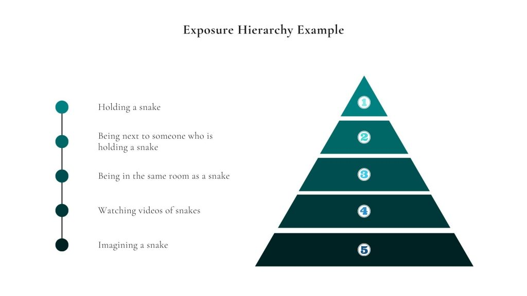 Exposure hierarchy with phobia or snakes